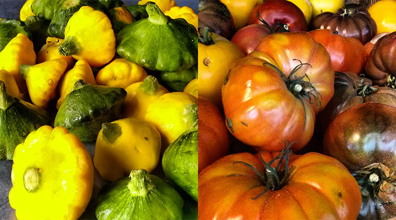 squash-tomatoes
